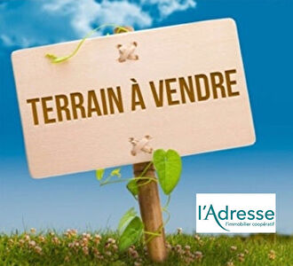 Grand terrain constructible 6000m²